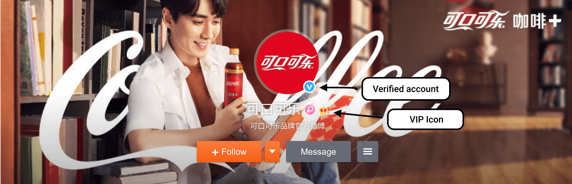 WEIBO Account. Registration and Promotion - 19